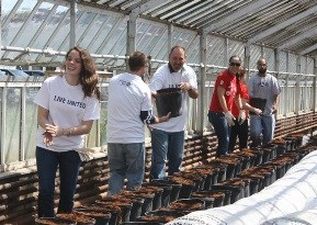 team members work a United Way project