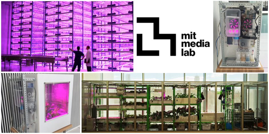 MIT Media Lab Collaboration