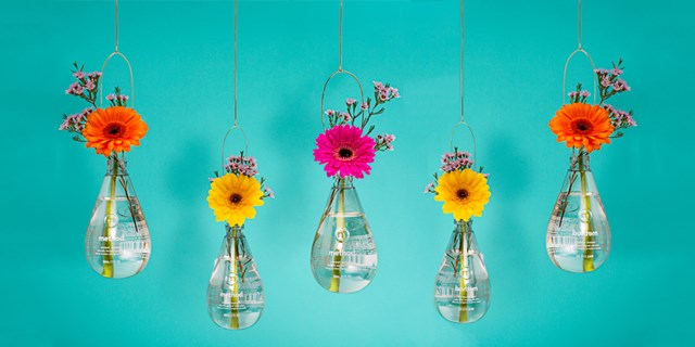 Flowers hang from the ceiling in Method bottle vases