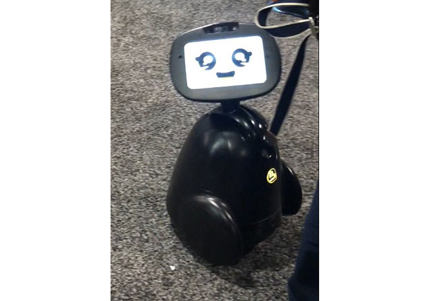 A companion robot on display at CES