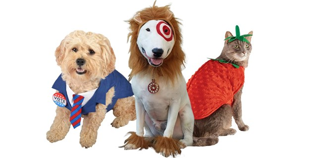 Bullseye the dog wears a lion headpiece with fuzzy feet. On each side are a dog and cat in costume.