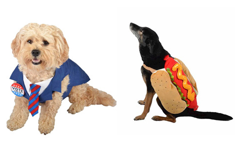 Dogs pose in presidential and hot dog costumes.