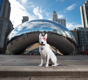 Bullseye stands in front of the Cloud Gate sculpture