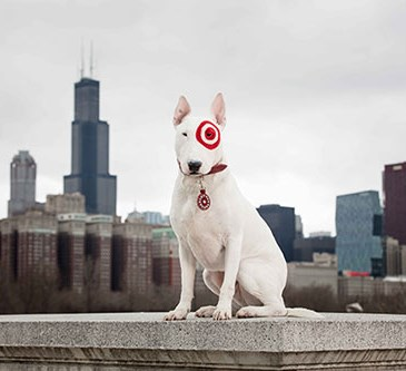 Bullseye stands in front of the Chicago skyline