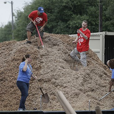 Team members digging on a large pile of wood chips