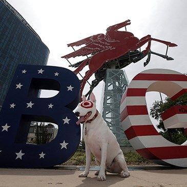 Bullseye stands between giant B and G sign