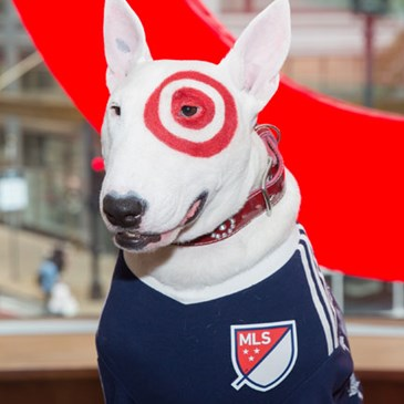 Bullseye the dog wears a navy MLS jersey
