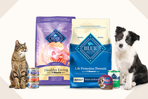 A cat and dog on either side of a variety of Blue Buffalo foods.
