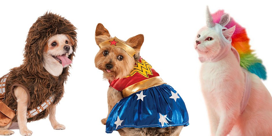 A dog in a Chewbacca costume; a dog in a Wonder Woman costume; a cat in a Unicorn costume