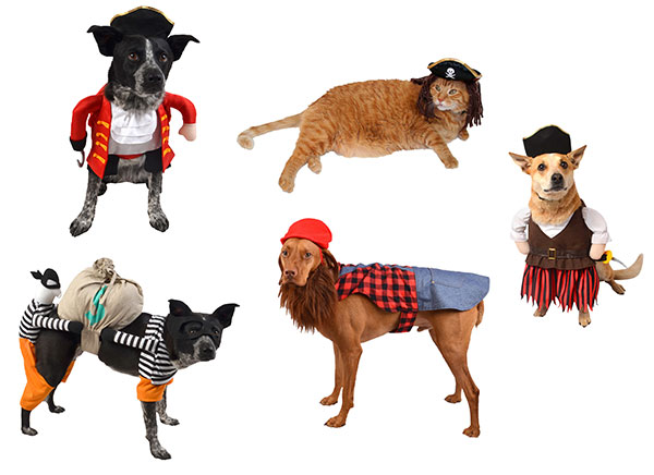 Pets in character costumes