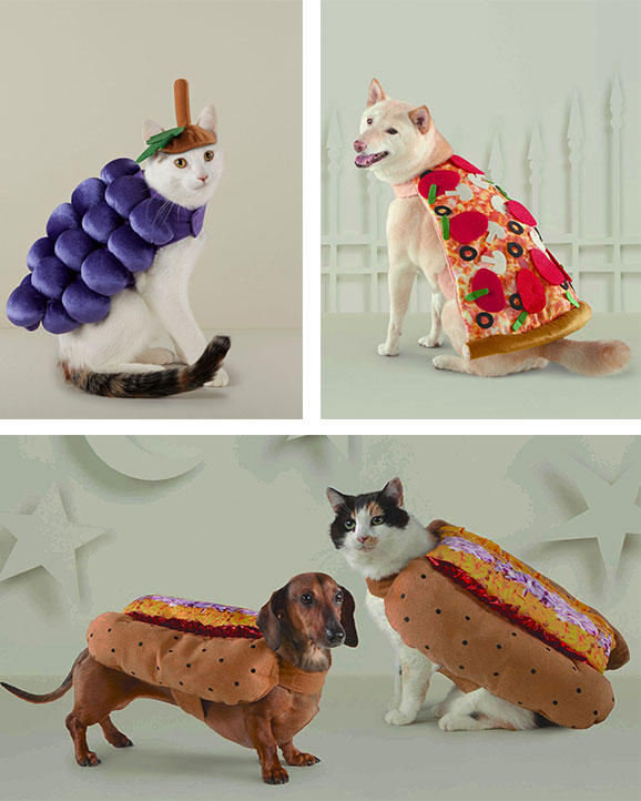 Pets in food-themed costumes