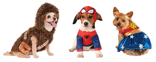 Dogs dressed in Chewbacca, Spider-Man and Wonder Woman costumes