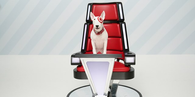 Bullseye the dog sits in a The Voice judge's chair