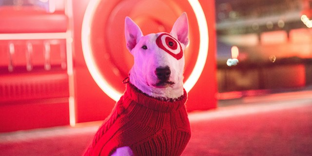 Bullseye the dog wears a red sweater, with a red light illuminated in the background