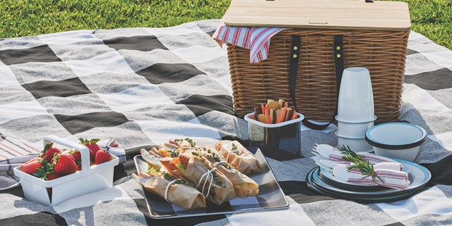 Outside picnic set up with Hearth & Hand with Magnolia plates, picnic basket, berry basket and more