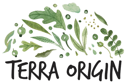 The Terra Origin logo with green leaves and black text against a white background