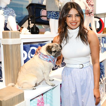 Priyanka stands next to the pug, sitting on a counter with the products