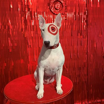 Bullseye sits on a red table in front of a red, sparkly background