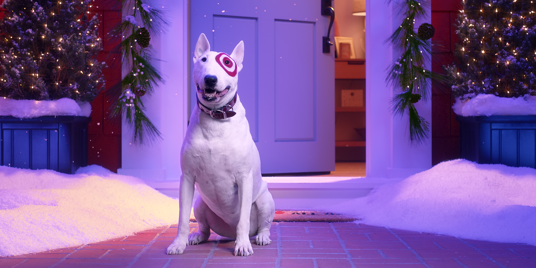 A white bull terrier with a red Bullseye logo over its eye stands in front of a house covered in snow and holiday lights