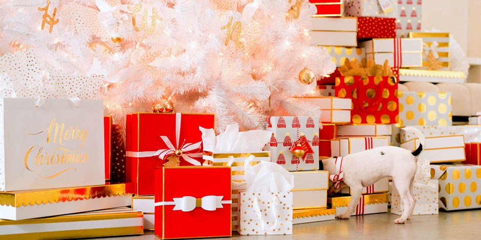 Sugar paper unwraps a new holiday line of paper goods for target sugar paper for target negle Images